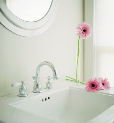 Green your Bathroom – Live Green